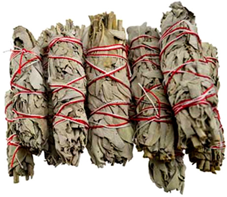White Sage smudge - 12 Pack